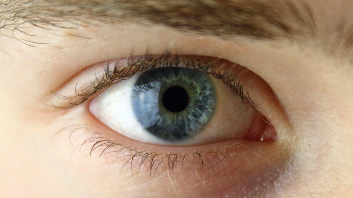 astygmatyzm-wady-wzroku-centrum-medyczne-dabrowskiego-zgierz